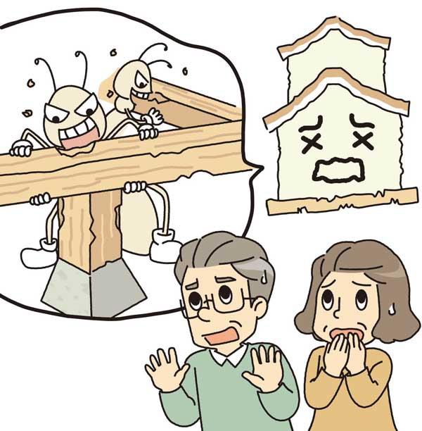 福岡県のシロアリ被害の動向